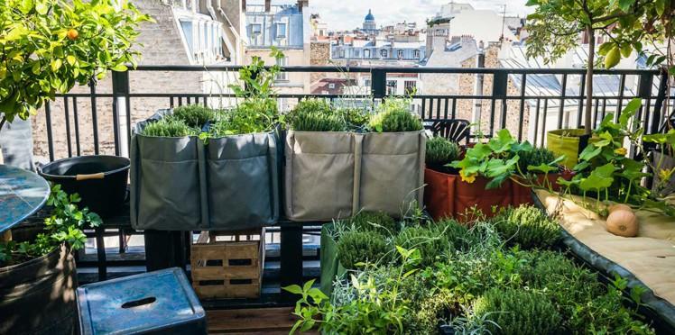 balcon-terrasse-jardin-comment-faire-un-potager