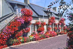 Maison-fleurie-Saint-Juvat